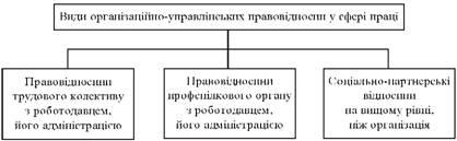 Види організаційно-управлінських правовідносин у сфері праці